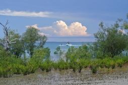 Cygnet Bay, Northwestern Australia