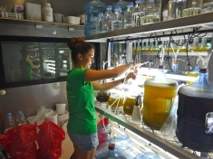 """Making algae"" in the lab"